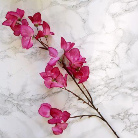 Zomerse decoratie tak roze